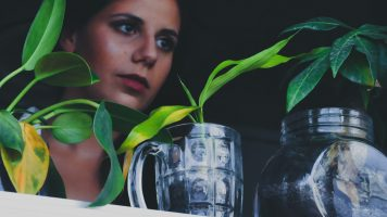 Hoe moet je planten stekken?